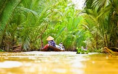 Ultimate Guide for the best Mekong Cruise Mekong Delta Vietnam, Vietnam Map, Vietnam Travel, Vietnam Vacation, Can Tho, River Bank, Luxury Travel, Southeast Asia, The Locals