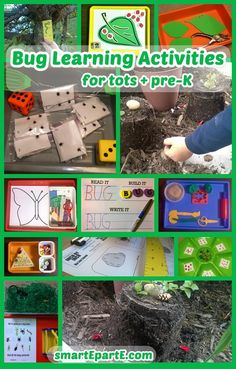 Bug Learning Activities for tot school and preschool, plus a free measuring printable based on the wonderful book Inch by Inch! Tot Trays, Tot School, Activity Ideas, Learning Activities, Bugs, Preschool, Printables, Posts, Education