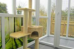 bradgateview4 Cattery