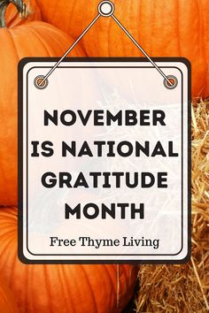 Thanksgiving Videos, Thanksgiving Quotes, Gratitude Quotes, Positive Quotes, Motivational, Inspirational Quotes, Interesting Blogs, Future Love, Story Quotes