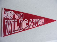 "Rare Disney High School Musical Wildcats Mini Pennant 9"" x 5"" Go Wildcats! Buy it now for $5.99 Free Shipping"