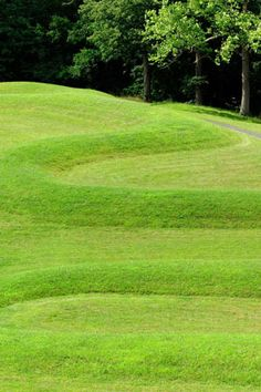 """The Great Serpent Mound is a 1,348-foot (411 m)-long, three-foot-high prehistoric effigy mound located on a plateau of the Serpent Mound crater along Ohio Brush Creek in Adams County, Ohio"". Wiki - http://en.wikipedia.org/wiki/Serpent_Mound"