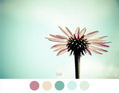 SOFT - Zachte tinten voor in het interieur. Groen - turquoise - crème en roze