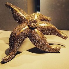 What an incredible piece, ingeniously created my the prestigious jewellery house @hemmerle. It is a sculptural starfish brooch, centering an 8,73 cts cushion cut brown diamond, delicately surrounded by diamond pavé totaling 47,96 cts. As seen at @tefaf_art_fair in Maastricht. Original photo by @jewelcurator  #hemmerle #starfish #brooch #highjewellery #savoirfaire #oneofakind #browndiamond #pavé #idealgift #jewelleryblogger #tefaf #maastricht #schmuck #art #creativity #beauty #newyork…