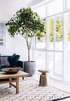 my scandinavian home: Sleek and rustic in a Sydney bachelor pad with live tree Design by Jilliam Dinkel