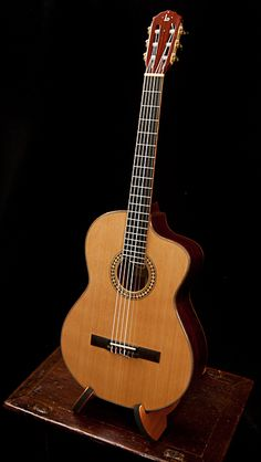Cocobolo Crossover Guitar with cedar top built by Jay Lichty of Lichty Guitars
