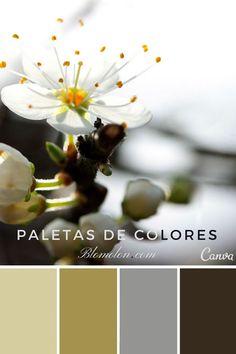 paletas de colores mes de agosto 1 estilo canva