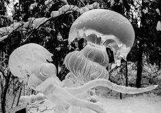Ice Jelly Fish from the Alaska ice carving championships.