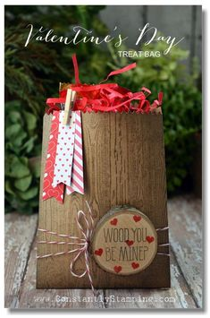 Valentine's Day Mini Treat Bag