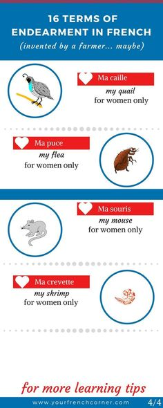Did someone call you a flea in French? Here are 16 Unusual Endearment Terms In French. Find out why, I think, they were invented by a French farmer. Teach Yourself French, How To Speak French, Learn French Beginner, French For Beginners, French Language Lessons, French Lessons, English Language, French Teacher, Teaching French