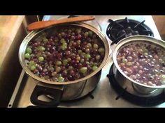 Druivensap maken