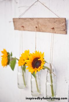 Wall Decor- Hanging Vases Like this idea for the kitchen! Hang extra bottles from a wood pallet, and put a flower in each.Kitchen (disambiguation) A kitchen is a room used for the preparation of food. Kitchen may also refer to: Home Goods Decor, Diy Home Decor, Pallet Wall Decor, Pallet Walls, Pallet Tv, Hanging Vases, Hanging Flowers, Wall Vases, Outdoor Flowers
