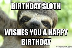 Happy birthday sloth meme - photo#32