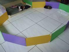 Creative Guinea Pig Cages | Guinea pig home!