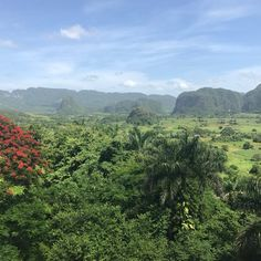 ⊹ pinned by ɑestheticgod Vinales, Mother Earth, Mother Nature, Life Is Beautiful, Beautiful Places, Cuba, Heaven On Earth, Wanderlust Travel, Wonders Of The World