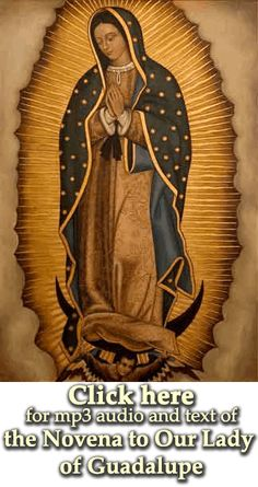 A Novena to Our Lady of Guadalupe text and mp3 download - Discerning Hearts