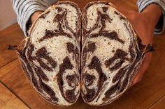 Pan cebra.