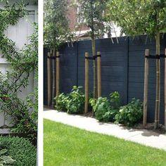 great backyard privacy fence design ideas to get inspired 29 backyard design diy ideas Backyard Privacy, Backyard Fences, Garden Fencing, Front Yard Landscaping, Landscaping Ideas, Backyard Landscaping Privacy, Landscaping Small Backyards, Fenced In Backyard Ideas, Outdoor Privacy