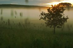 I promised the morning sun by The 10 cent designer, via Flickr