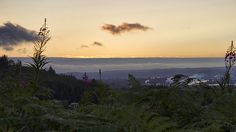 Sunset over Grays Harbor Photograph