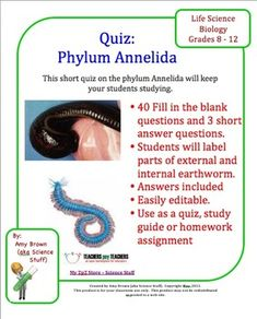 Multiple choice, Worms and Shorts on Pinterest