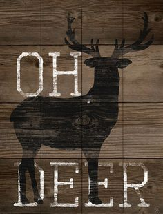 'Oh Deer' Wall Art- some rustic charm!