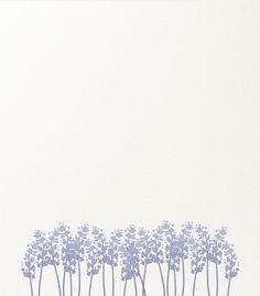 Illustration | Lavender