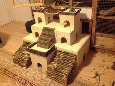 Incredible Chinchilla Cage And Playroom Setup
