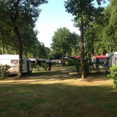 Foto's   Camping de Morgenster Sidewalk, Camping, Campsite, Side Walkway, Walkway, Campers, Walkways, Tent Camping, Rv Camping