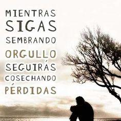 Recuerda .........