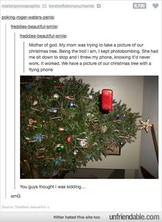 Christmas tree taking a selfie
