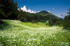 I will remember Bulgaria as a country filled with beautiful mountains and streams.