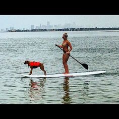 #dogdaysofsummer, #westmarine