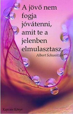 A jövő... Albert Schweitzer, God First, Best Friends, Life Quotes, Wisdom, Joy, Signs, Words, Minden