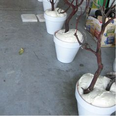 branches in pots using spray foam ~ Add some moss to the top of the foam add lights and there you have it.Cheap decorsetting branches in pots using spray foam ~ Add some moss to the top of the foam add lights and there you have it. Noel Christmas, Christmas Crafts, Christmas Decorations, Christmas Lights, Winter Wonderland Decorations, Winter Wonderland Theme, Winter Theme, Outdoor Christmas, Christmas Wedding