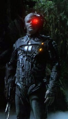 From the We Are Borg Assimilation Archive