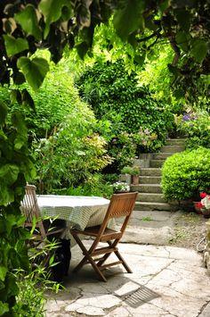 Velleron, Cote jardin, Vaucluse, Provence ~ Patrick Amet Photographie