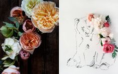 I've been swooning over Kari Herer's photographs and illustrations for so long that I need to just bite the bullet and finally purchase a few. She's now working with a medium format camera, which means these gorgeous still lifes are available in larger sizes! What am I waiting for?!