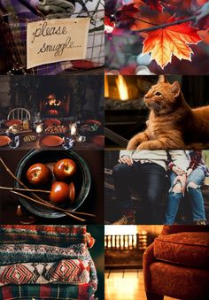 Mood board collage inspiration colors photography