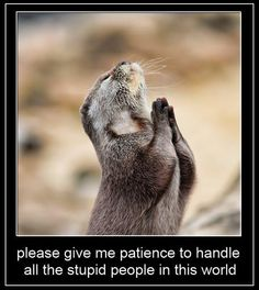 Patience, Give me patience to handle all the stupid people in this world