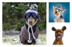 Top your pooch with a toasty warm (and utterly adorable) a Canadian-inspired toque.