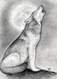 how to draw a howling wolf