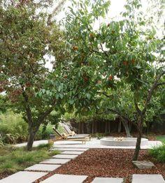 des arbres fruitiers et une allée d'ardoises blanches