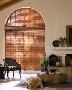 "2"" Arch and STD. Horizontal Blind"