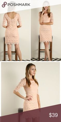 "LAST 2!! Blush Lace Dress Solid Lace Shift dress in blush color (light pink). Comes in original packaging. 85% cotton, 15% Nylon. So pretty!!! S, M & L available, select your size at checkout! **Price is firm** NO TRADES! Measurements: Small 17"" Medium 18.5"" Large 20"" underarm to underarm & 37"" length Fashionomics Dresses"