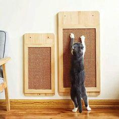 Sisal, Cat Wall Furniture, Modern Cat Furniture, Luxury Furniture, Furniture Ideas, Cat Wall Shelves, Scratched Wood, Cat Playground, Cat Scratching Post