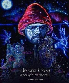 I'm only saving this for his hat haha look he's a little mushroom I can't take this seriously at all Words Quotes, Life Quotes, Qoutes, Sayings, Consciousness Quotes, Higher Consciousness, Psychedelic Quotes, What Is Spirituality, Spiritual Manifestation