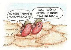 bacterias-piel-rotulado.jpg 870×616 pixeles