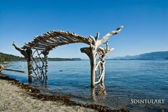 "This must be the ""after global warning"" wedding arbor. Whatever, this structure is just awesome. The legs are sunk into the ground, and are driftwood tree trunks, upside down. The top is arched and spans about 8 feet. All weddings at  this location must be scheduled for low tide."