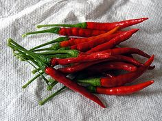 The Chile de árbol (Spanish for tree chili) is a small and potent Mexican chili pepper also known as bird's beak chile and rat's tail chile. The peppers are a bright red color when mature.[1] Chile de árbol peppers can be found fresh, dried, or powdered.[2] As dried chiles, they are often used to decorate wreaths because they do not lose their red color after dehydration.
